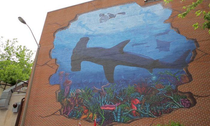 Imagen ilustrativa de un mural con un tiburón martillo. (NTDTV)