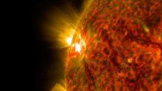 El Sol se acerca a un cambio de ciclo: ¿tendrá consecuencias para la Tierra?
