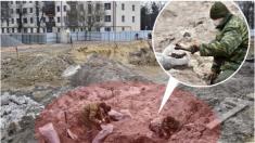 Descubren fosa comun con más de 1000 judíos ejecutados de la Segunda Guerra Mundial en Bielorrusia