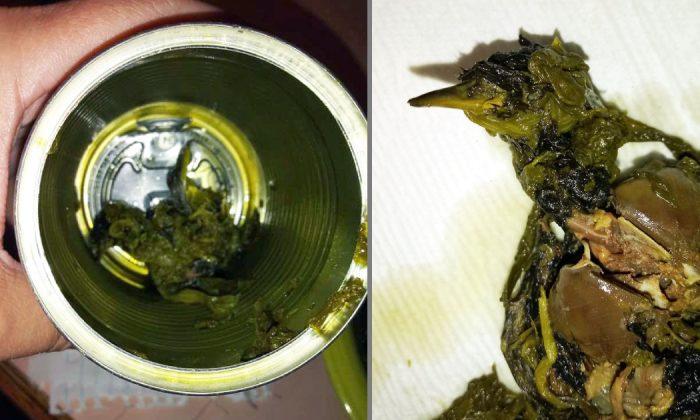 Cherie Lyons muestra un ave muerta que dice haber encontrado en una lata de espinacas de Del Monte en Chambersburg, Pa., el 14 de junio de 2019. (Cherie Lyons/Facebook)