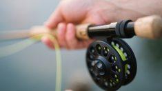 """Atrapan un pez con """"dientes humanos"""" en una playa de Florida, aseguran pescadores"""