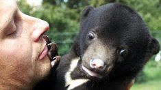 Descubren que los ruidos molestos en un edificio eran de un oso que tenían de mascota