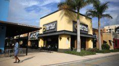 Una rata viva cayó del techo sobre el menú de una cliente en un restaurante