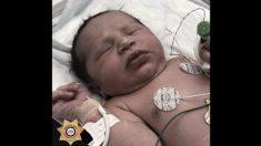 Más de 1000 personas quieren adoptar a la bebé encontrada en una bolsa de basura en EE. UU.