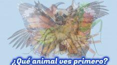 El primer animal que veas en esta imagen revelará aspectos ocultos de tu personalidad