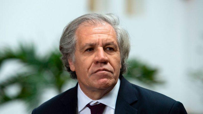 El Secretario General de la Organización de los Estados Americanos (OEA), Luis Almagro, en la sede de la OEA en Washington, DC, el 27 de febrero de 2019. (ANDREW CABALLERO-REYNOLDS/AFP/Getty Images)