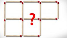 Desafío: Quita 5 palitos para obtener 2 cuadrados ¿Puedes hacerlo en 10 segundos?