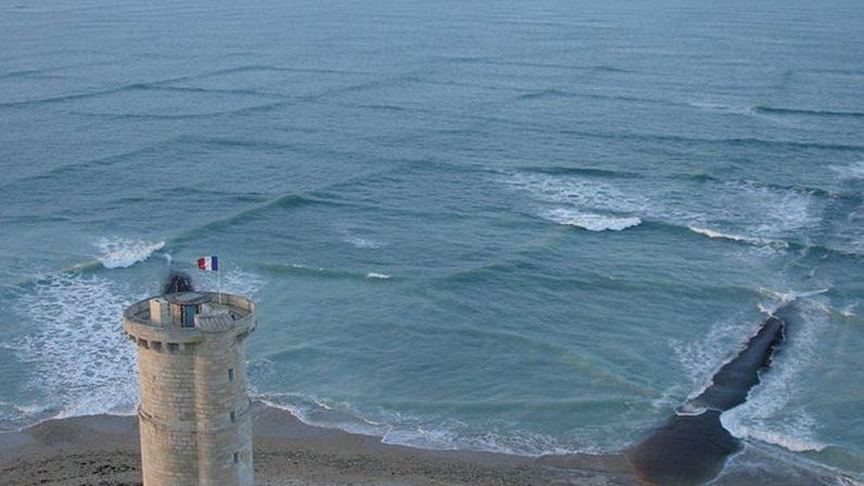 Mar cruzado en la isla francesa de Re.  (Michael Griffon / Creative Commons Attribution 3.0 Unported license)