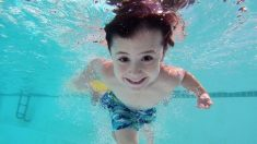 Materia fecal en las piscinas: autoridades sanitarias advierten sobre sus peligros