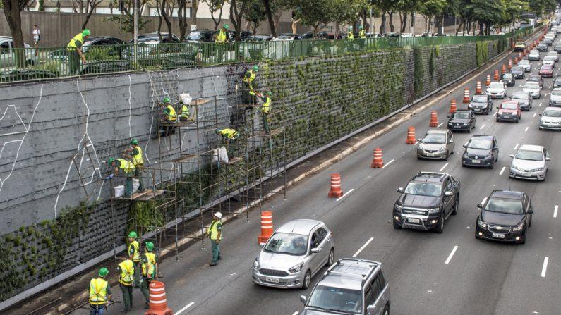 México convierte sus carreteras en bellos jardines verticales para bajar la contaminación del aire
