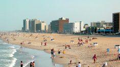 Piojos de mar carnívoros atacan a bañistas en Virginia Beach, los casos van en aumento