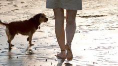 Es acosada por dos hombres en la playa, pero una perrita callejera la salva del ataque