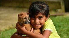 Niña mexicana dona todos sus ahorros para salvar la vida de una perrita de la calle enferma