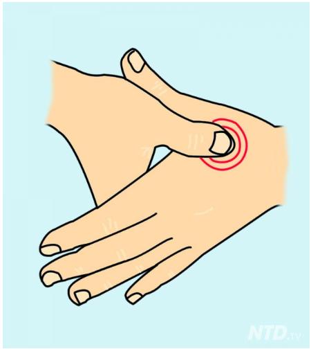 Dolor de cabeza sinusal y dolor de espalda superior
