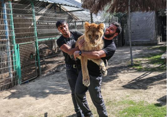 Animales en cautiverio