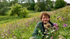 Preocupa extinción masiva de insectos, aves y plantas en Alemania y Holanda