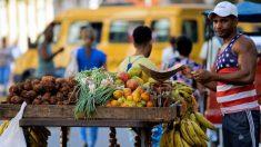 Cuba es un gran importador de carne de res pero el pueblo no puede acceder a ella, solo los turistas