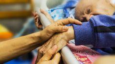 Hallan gusanos en la sonda de alimentación de un paciente en Estados Unidos