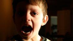 Niño tenía prohibido entrar al ático de su abuela, cuando lo logra casi se desmaya