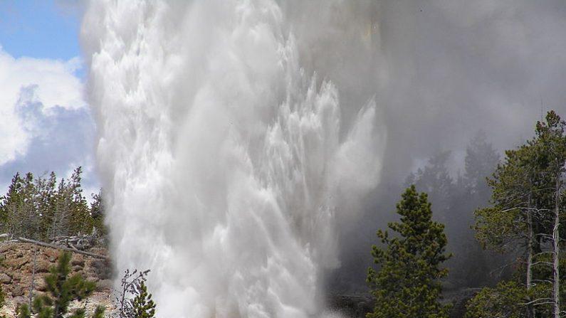 Géiser Steamboat de Yellowstone rompe un nuevo récord mensual con siete erupciones de agua y podría superar pronto el récord anual de 32 erupciones. Imagen de archivo del 23 de mayo de 2005. (Wikimedia Commons)