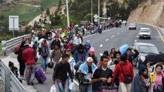 No hay cómo recibir más venezolanos: países receptores se quedan sin dinero