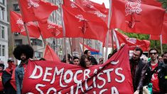 """""""A ningún medio parece importarle que Bernie y AOC apoyan las ideas de Stalin y Mao"""", dice senador"""