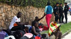 Interceptan en Guatemala a más de 200 migrantes que iban hacia Estados Unidos