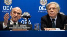 """Abrams en la OEA sobre Venezuela: """"ninguna dictadura dura para siempre"""""""