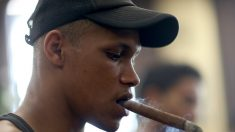 Como en EE.UU. ahora los cigarros cubanos Cohiba están prohibidos en Brasil