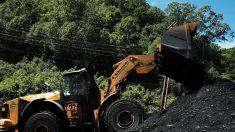 Magnate del carbón muere junto a 6 acompañantes al caer helicóptero en Bahamas