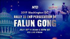 Los practicantes de Falun Dafa se unirán en Washington para poner fin a la persecución en China