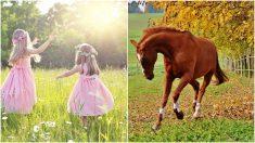 Mamá filma a las niñas bailando, pero no puede dejar de reír cuando ve a su caballo