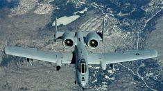 EE.UU.: Fuerza Aérea choca contra un ave y deja caer 3 bombas ficticias en Florida