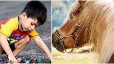 Niño con rara condición se acerca a joven caballo y su interacción deja sin palabras a su mamá