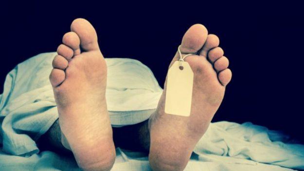 Los muertos se mueven todo el tiempo de modo asombroso, revelan imágenes cada media hora 17 meses