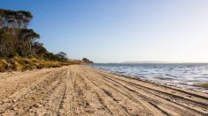 Foto viral: parece una playa pero es algo completamente diferente