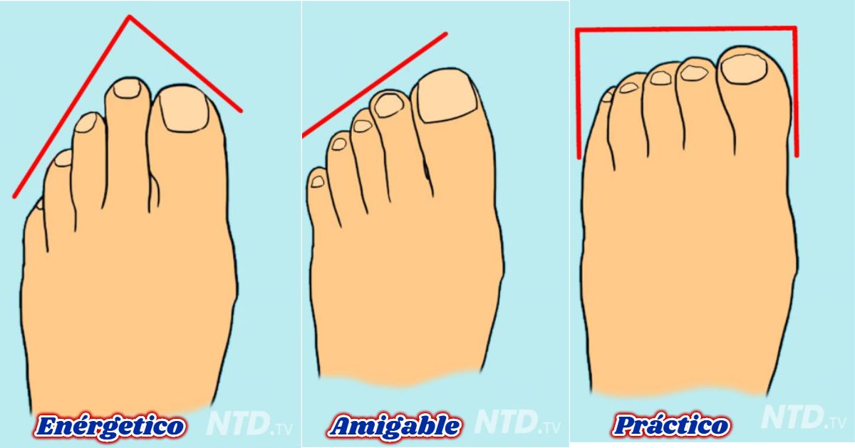 Que pies forma los significa de