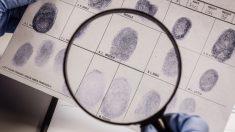 Las huellas dactilares son un mapa de tu personalidad, identifica cuál es la tuya y sorpréndete