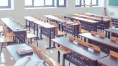 """Profesora de Texas fue despedida por informar en Twitter que habían """"estudiantes ilegales"""" en escuela"""
