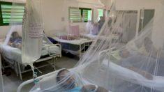 Se elevan a 697 los casos de dengue en Nicaragua, con 7 muertos