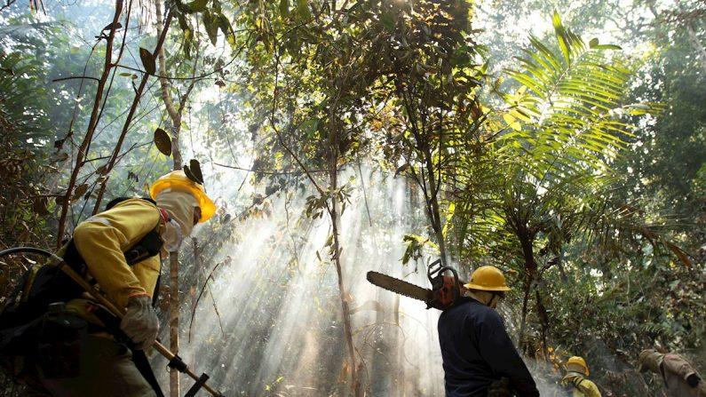 Un bombero se ve tras las llamas durante los combates de los incendios en la selva amazónica este miércoles, cerca de Porto Velho (Brasil). EFE/Joédson Alves