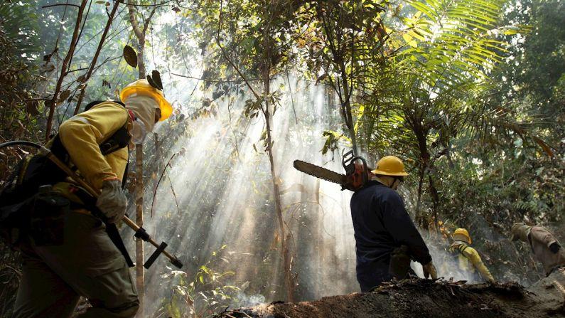 Um bombeiro é visto atrás das chamas durante os incêndios na Floresta Amazônica nesta quarta-feira, perto de Porto Velho. (EFE/Joédson Alves)