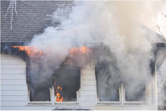 Perrito dentro de casa en llamas