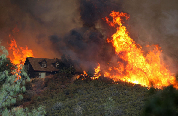 Imagen Ilustrativa. ( Justin Sullivan/Getty Images)