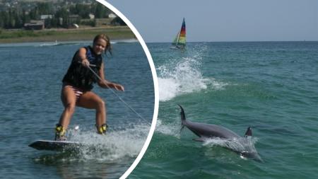 Una manada de delfines aparece mientras practicaba wakeboard y disfruta de la experiencia de su vida