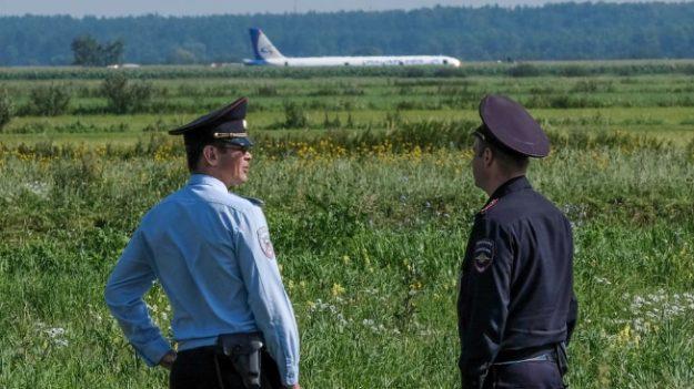 Avión aterriza de emergencia en campo de maíz tras colisión con bandada de pájaros