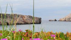 Grecia busca personas que quieran vivir en hermosa isla del Mediterráneo con casa y 600 dólares