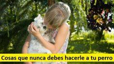 8 cosas perjudiciales que todo dueño de un perro debe evitar por completo