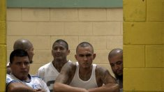 Descubren túnel en Honduras usado como refugio por pandilla Mara Salvatrucha