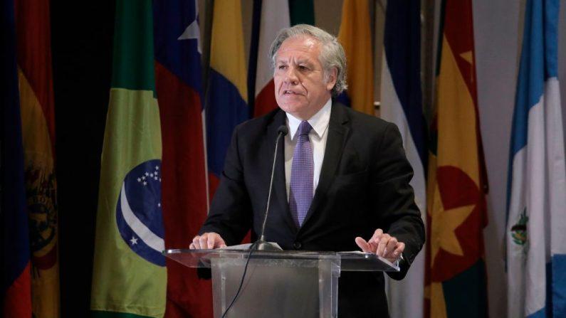 Luis Almagro, Secretario General de la Organización de los Estados Americanos, en la Ciudad de Panamá, Panamá, el 29 de julio de 2019. (MAURICIO VALENZUELA/AFP/Getty Images)